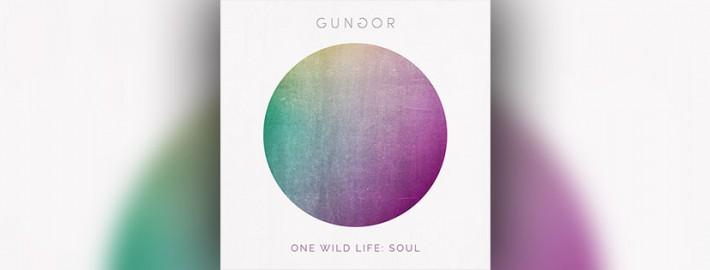 Gungor - One Wild Life