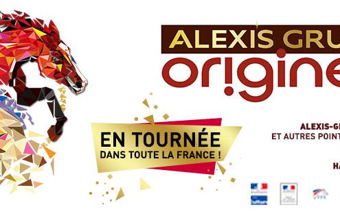 Cirque Alexis Gruss Lyon