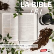 Bible IRL